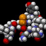 The Oxytocin Connection